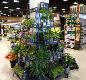 IGA Thunderbird store showcase of floral products